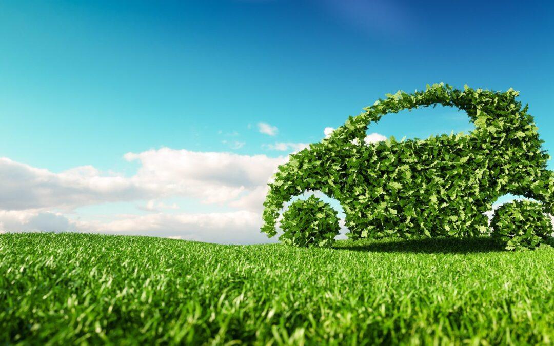 carburant vert